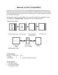 Hinweise zu LISA 2.0 und RISCy
