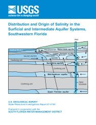 Distribution and Origin of Salinity in the Surficial ... - Florida - USGS