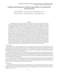 Stratigraphy and hydrogeology of a submarine ... - Florida - USGS