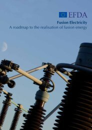 Fusion Electricity A roadmap to the realisation of fusion energy - EFDA