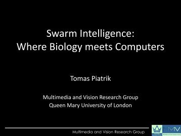 Swarm Intelligence: