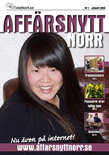 Januari 2008 - Affärsnytt Norr