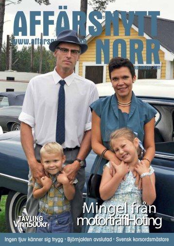 Mingel från motorträff i Hoting - Affärsnytt Norr