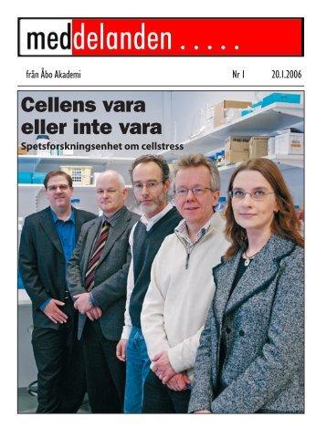 Hela den tryckta tidningen som en pdf-fil (ca 2100 KB) - Åbo Akademi