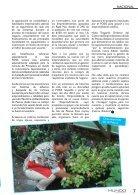 MUNDO EMPRENDEDOR - Page 7