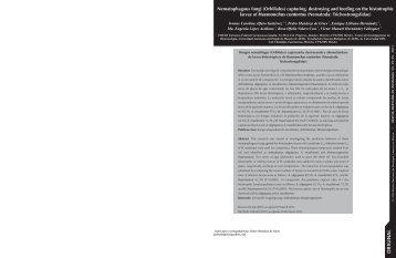 Nematophagous fungi - Revista Mexicana de Micologia