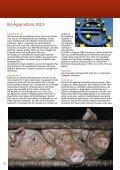 Einladung zur ordentlichen ... - Menschen für Tierrechte Bayern e.v. - Seite 6