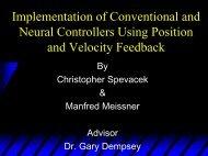 Preliminary Power Point Presentation