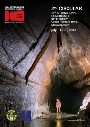 download a PDF file - Speleogenesis