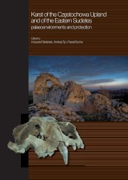 Download PDF - Speleogenesis