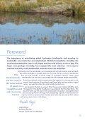 The Pond Manifesto - Page 3