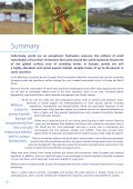 The Pond Manifesto - Page 4