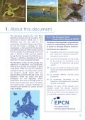 The Pond Manifesto - Page 5