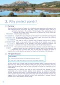 The Pond Manifesto - Page 6