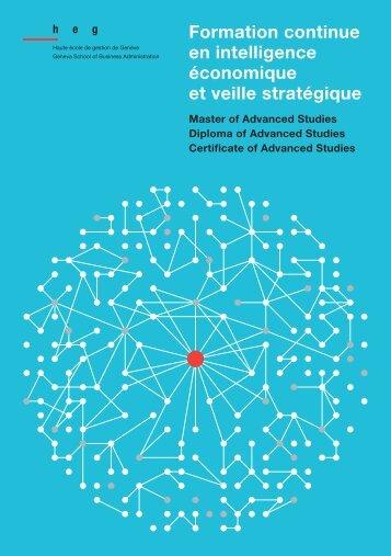 Formation continue en intelligence économique et veille stratégique