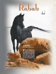 n.9 - Rabab Stud - Desertheritagemagazine.com desert heritage ...
