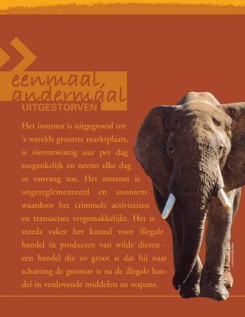 Report 2007 Bidding for Extinction_Dutch.pdf