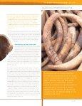 Report 2007 Bidding for Extinction_Dutch.pdf - Page 2