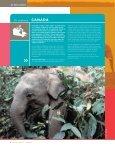 Report 2007 Bidding for Extinction_Dutch.pdf - Page 7