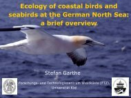 Ecology of coastal birds and seabirds at the German North Sea: a ...