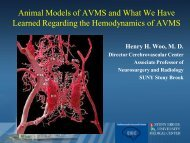 Animal Models of AVMS and What We Have Learned Regarding the ...