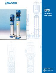 The SSV Dual Pump System