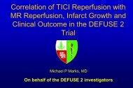 DEFUSE 2 Interventional Procedures Vascular Imaging Evaluation