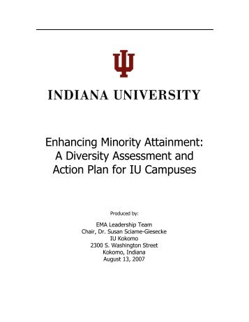 EnhancingMinori ... ses_Diversity_08132007.pdf - AIM @ IU Home ...