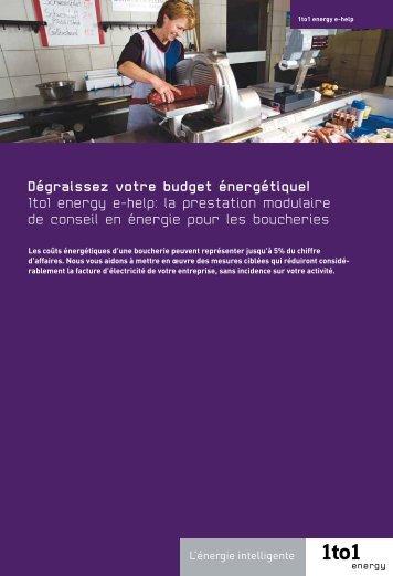 Dégraissez votre budget énergétique! 1to1 energy e-help: la ...