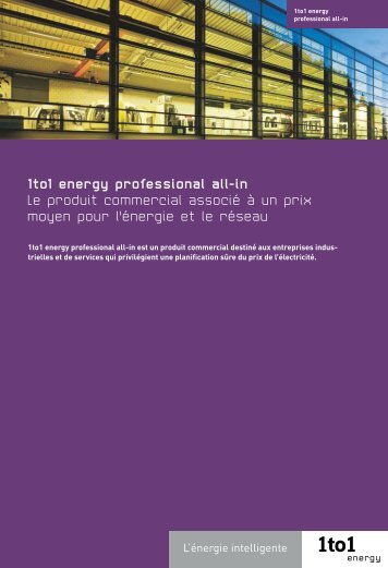 1to1 energy professional all-in Le produit commercial associé à un ...