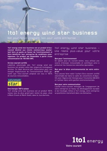 1to1 energy wind star business