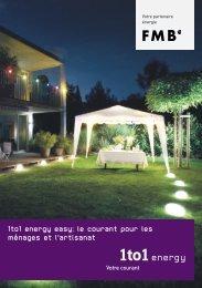 1to1 energy easy: le courant pour les ménages et l'artisanat