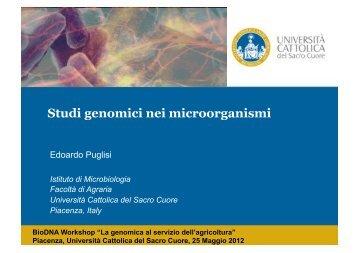 Studi genomici nei microrganismi - Centri di Ricerca - Università ...