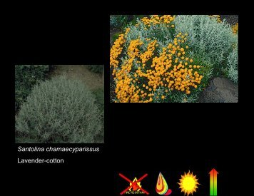Part 3 of Ornamentals Presentation - Los Alamos County Extension ...