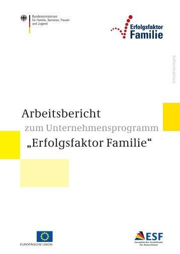 """Arbeitsbericht """"Erfolgsfaktor Familie"""" - Familienzentrum Langeland"""