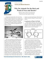 Why Do Animals Eat the Bark of Trees and Shrubs? - Purdue ...