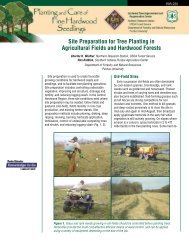 Site Preparation for Tree Planting in Agricultural Fields - Purdue ...