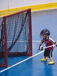 Evolution of the Hybrid - 3d Lacrosse
