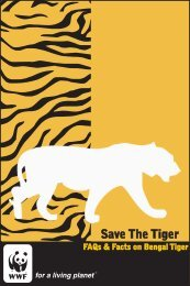 FAQs & Facts on Bengal Tiger - WWF-India