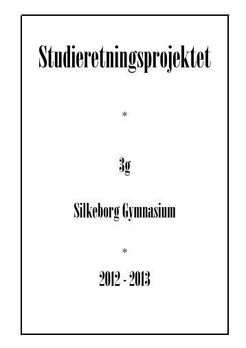 * 3g Silkeborg Gymnasium * 2012 - 2013