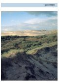 Sandflugt - Page 2
