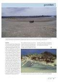 Sandflugt - Page 6
