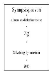 Almen studieforberedelse Silkeborg Gymnasium 2013