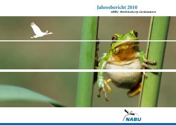 Jahresbericht 2010 - Nabu