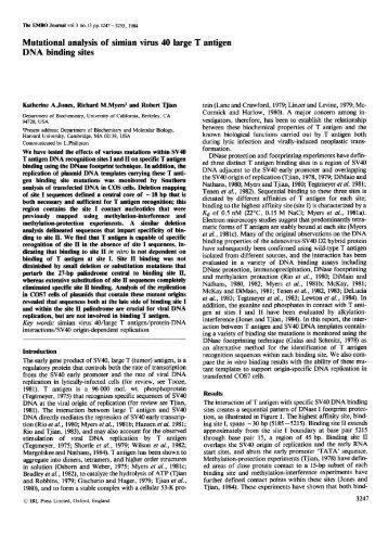 Mutational analysis ofsimian virus 40 large T antigen DNA binding ...