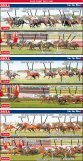 RACE 3 RACE 2 RACE 1 - The Courier-Mail - Page 2