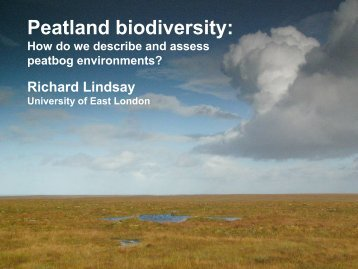 Peatland biodiversity: - Personal Home Pages (at UEL) - University ...