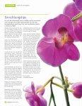 Download Bericht - Feng Shui - Seite 3
