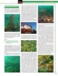 Bulharsko - BUDDY Potápění - Page 5