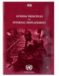 Guiding principles on internal displacement - libya humanitarian ...